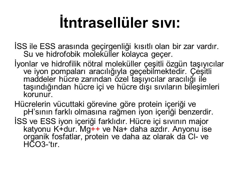 İtntrasellüler sıvı: İSS ile ESS arasında geçirgenliği kısıtlı olan bir zar vardır. Su ve hidrofobik moleküller kolayca geçer.