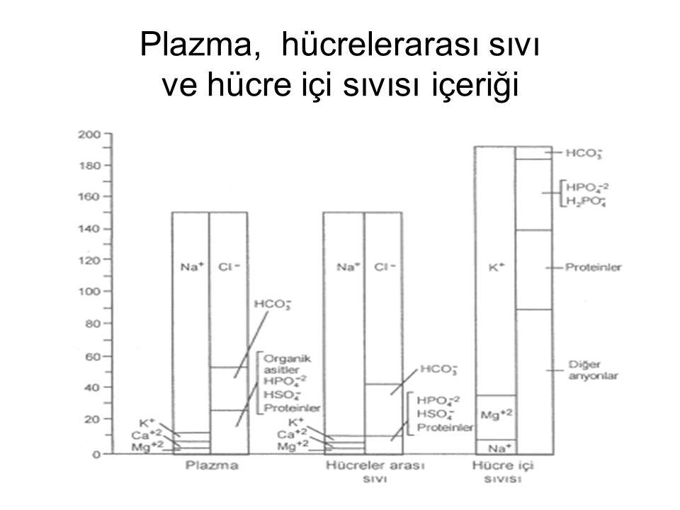 Plazma, hücrelerarası sıvı ve hücre içi sıvısı içeriği