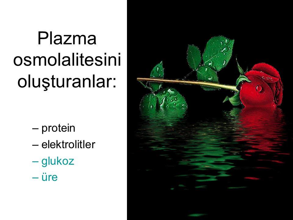Plazma osmolalitesini oluşturanlar: