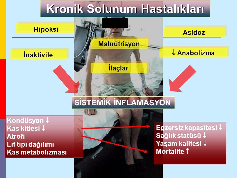Kronik Solunum Hastalıkları