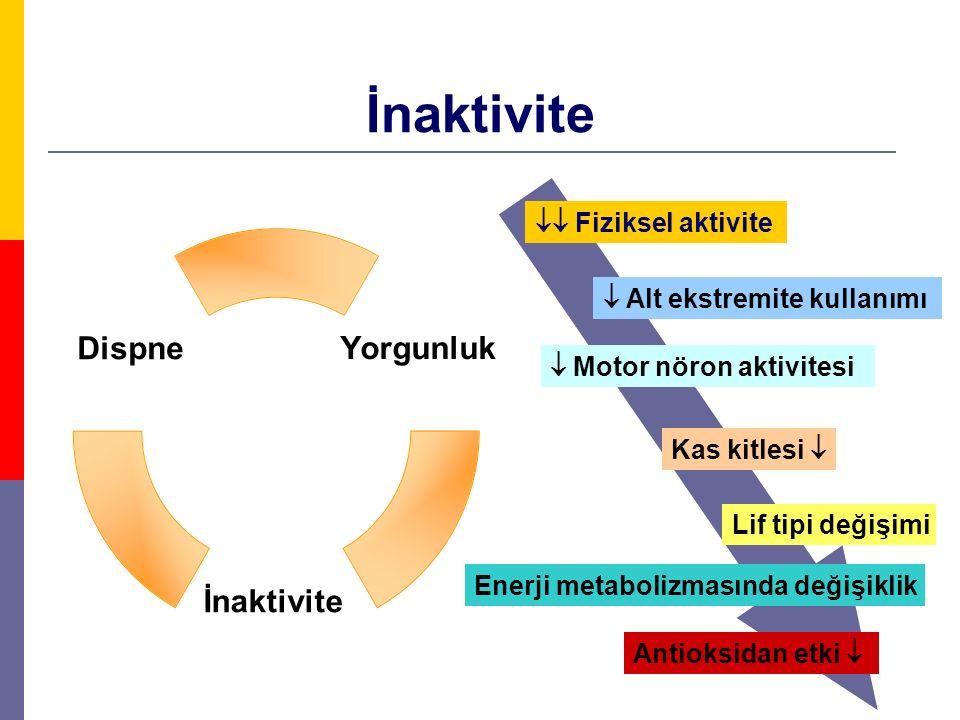 İnaktivite  Fiziksel aktivite  Alt ekstremite kullanımı