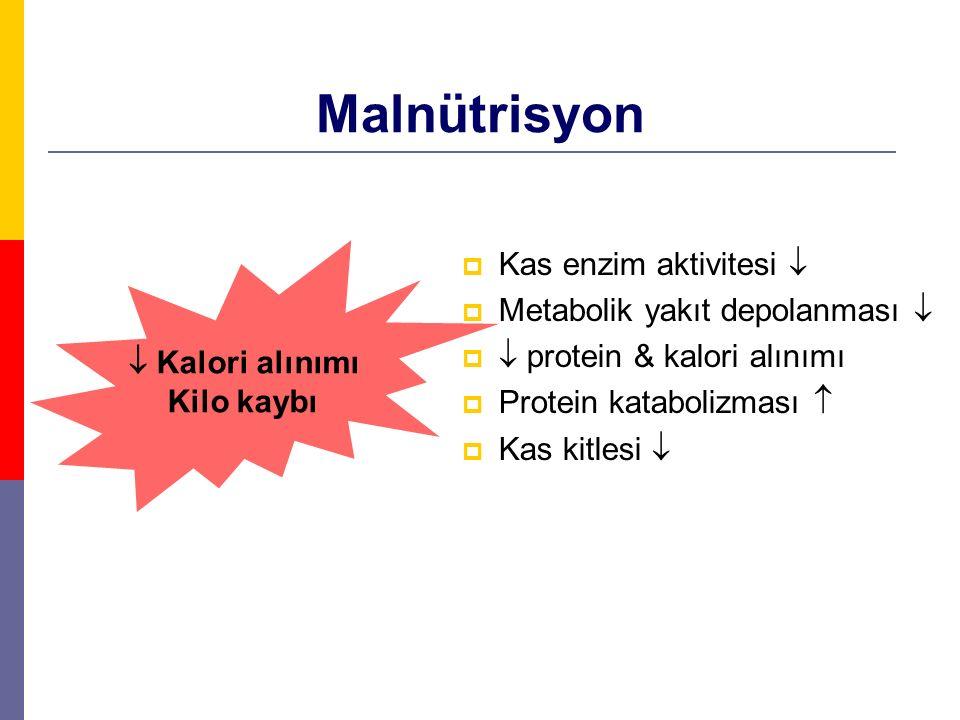 Malnütrisyon Kas enzim aktivitesi  Metabolik yakıt depolanması 