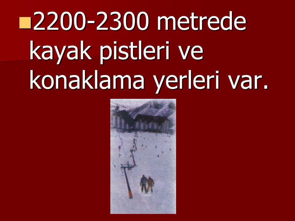 2200-2300 metrede kayak pistleri ve konaklama yerleri var.