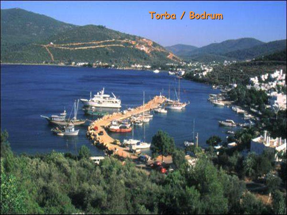 Torba / Bodrum