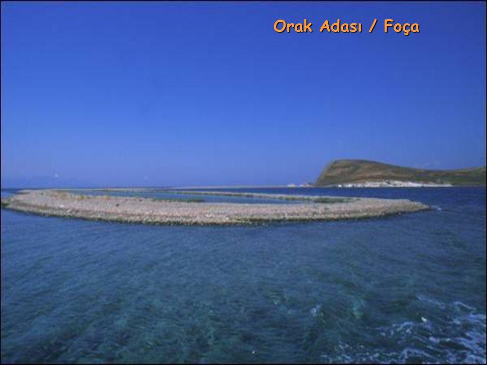 Orak Adası / Foça