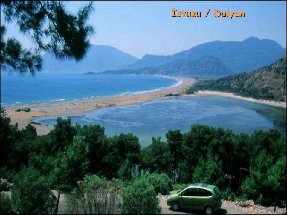 İstuzu / Dalyan