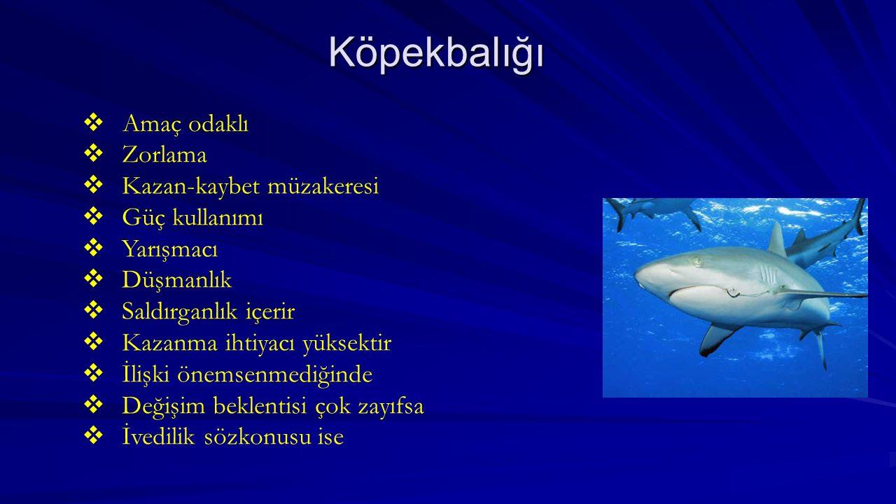 Köpekbalığı Amaç odaklı Zorlama Kazan-kaybet müzakeresi Güç kullanımı