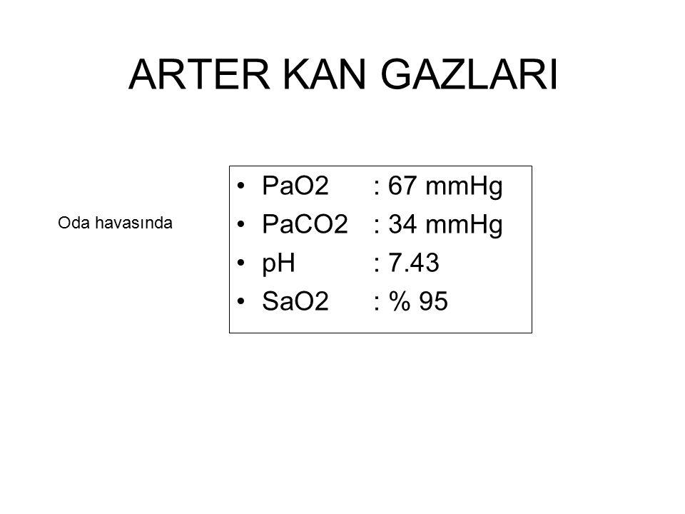 ARTER KAN GAZLARI PaO2 : 67 mmHg PaCO2 : 34 mmHg pH : 7.43 SaO2 : % 95