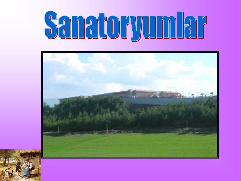 Sanatoryumlar