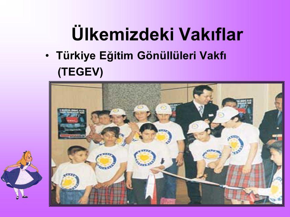 Ülkemizdeki Vakıflar Türkiye Eğitim Gönüllüleri Vakfı (TEGEV)