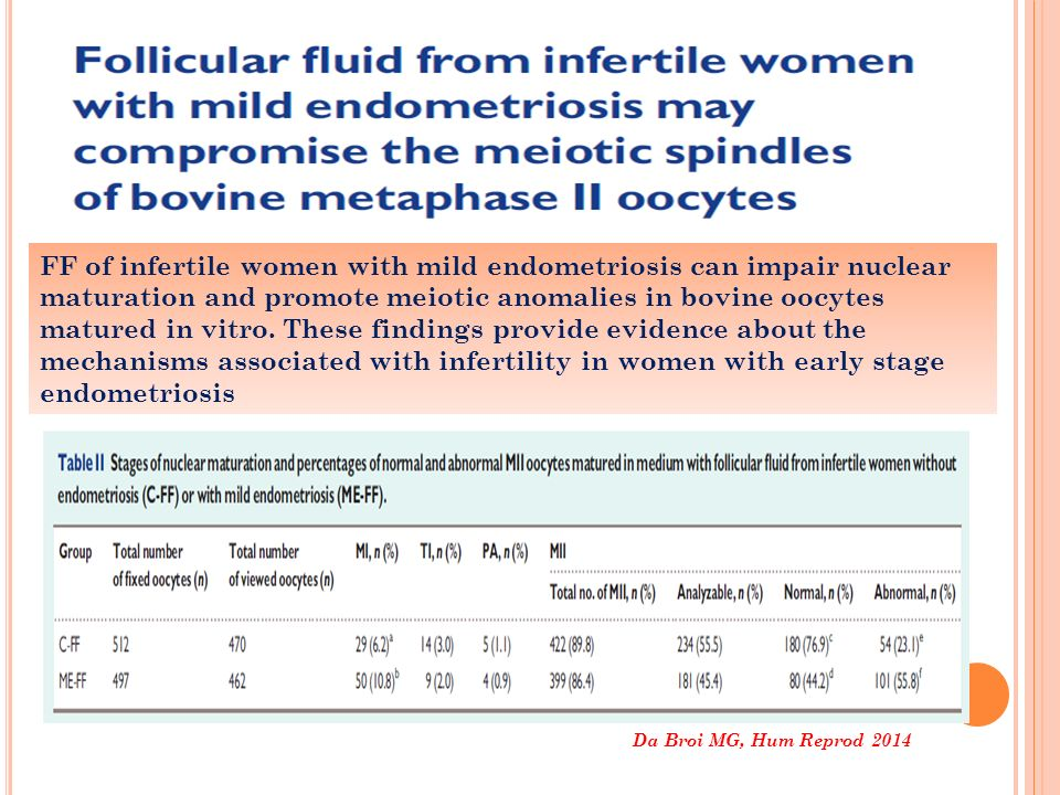 FF of infertile women with mild endometriosis can impair nuclear maturation and promote meiotic anomalies in bovine oocytes matured in vitro. These findings provide evidence about the mechanisms associated with infertility in women with early stage endometriosis