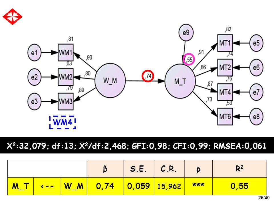 X2:32,079; df:13; X2/df:2,468; GFI:0,98; CFI:0,99; RMSEA:0,061