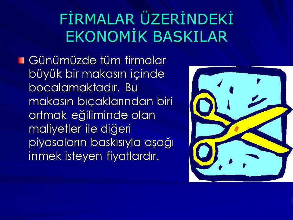 FİRMALAR ÜZERİNDEKİ EKONOMİK BASKILAR