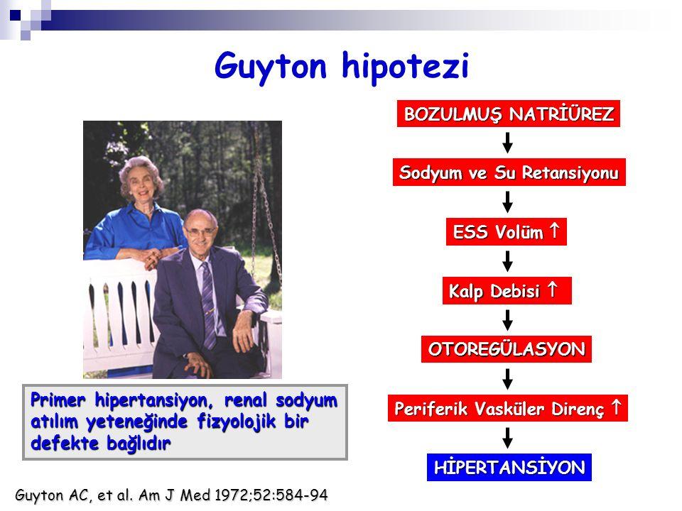 Guyton hipotezi Primer hipertansiyon, renal sodyum
