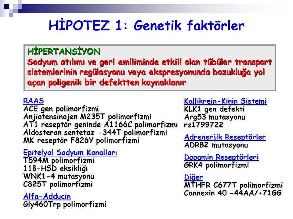 HİPOTEZ 1: Genetik faktörler