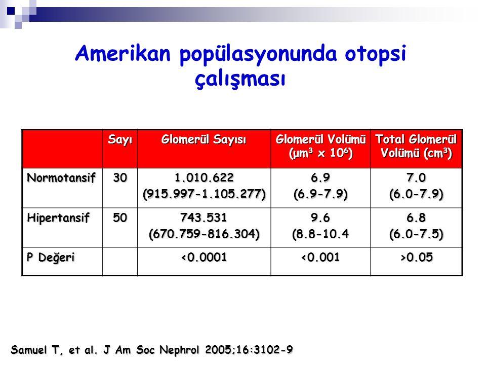 Amerikan popülasyonunda otopsi çalışması Total Glomerül Volümü (cm3)