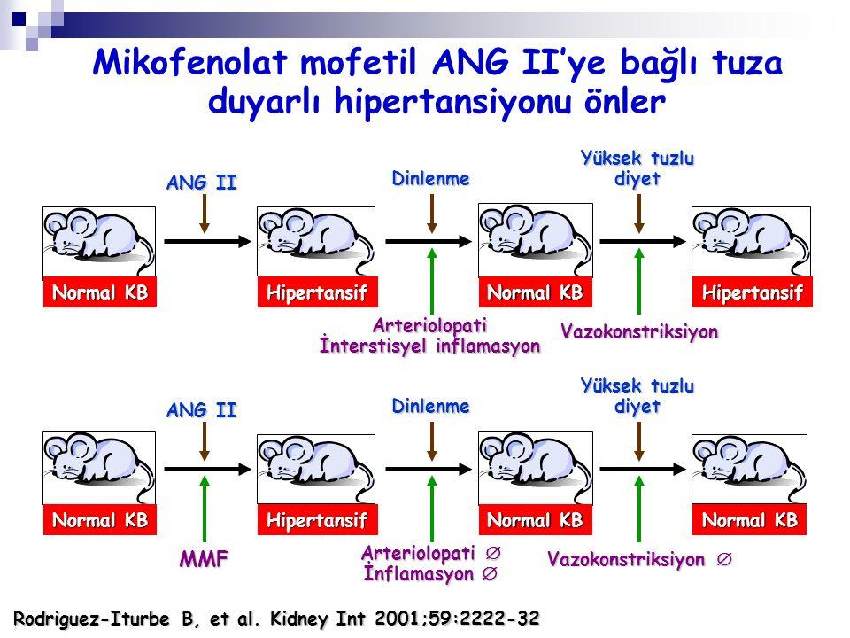 Mikofenolat mofetil ANG II'ye bağlı tuza duyarlı hipertansiyonu önler
