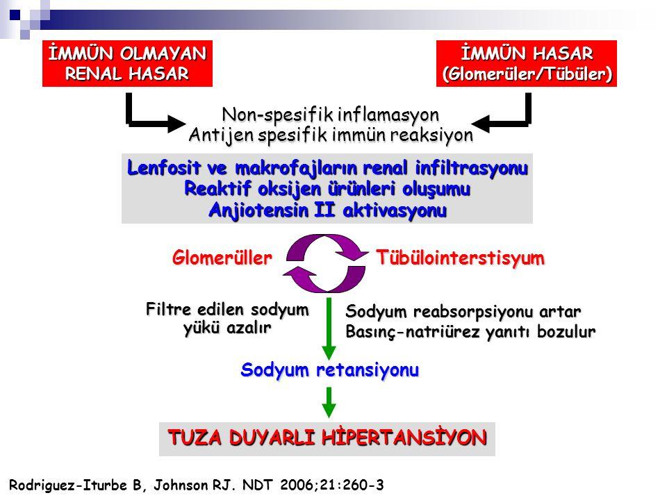 Non-spesifik inflamasyon Antijen spesifik immün reaksiyon