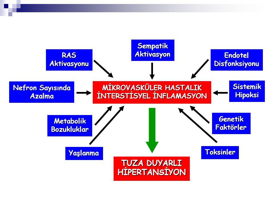 MİKROVASKÜLER HASTALIK İNTERSTİSYEL İNFLAMASYON
