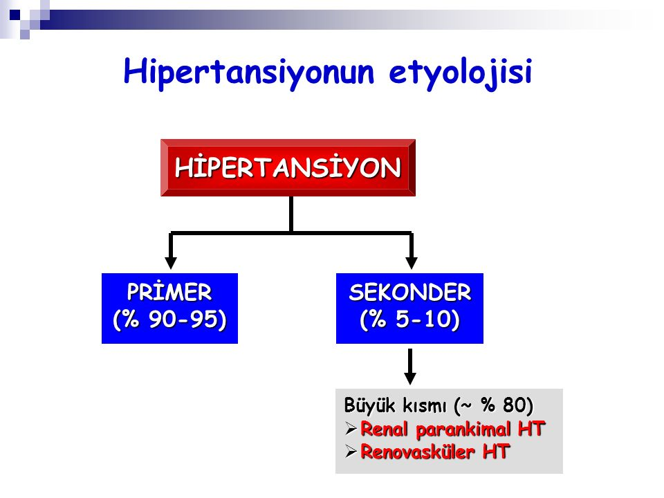 Hipertansiyonun etyolojisi