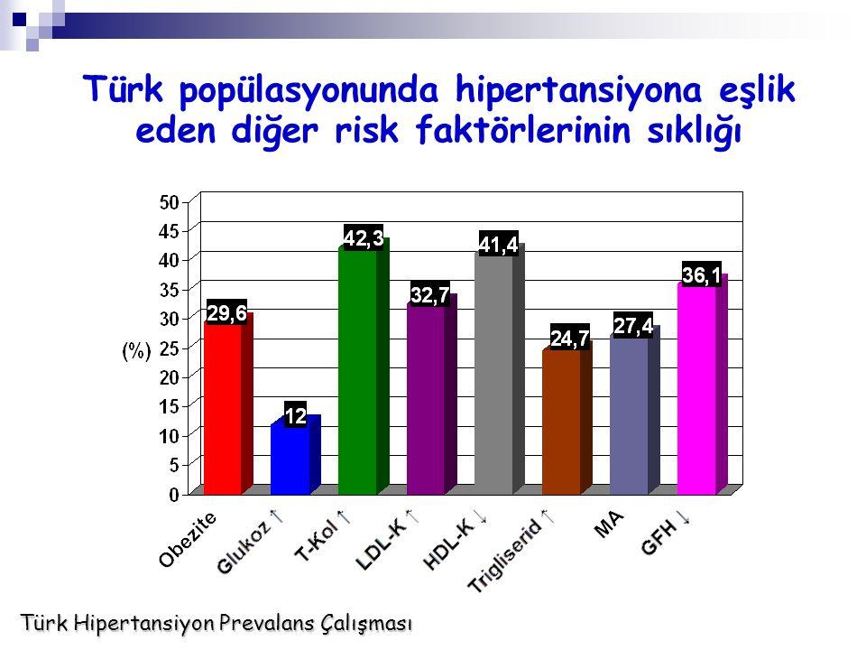 Türk popülasyonunda hipertansiyona eşlik eden diğer risk faktörlerinin sıklığı