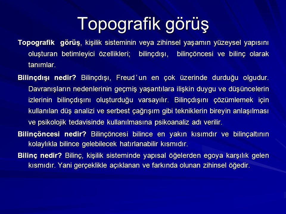 Topografik görüş