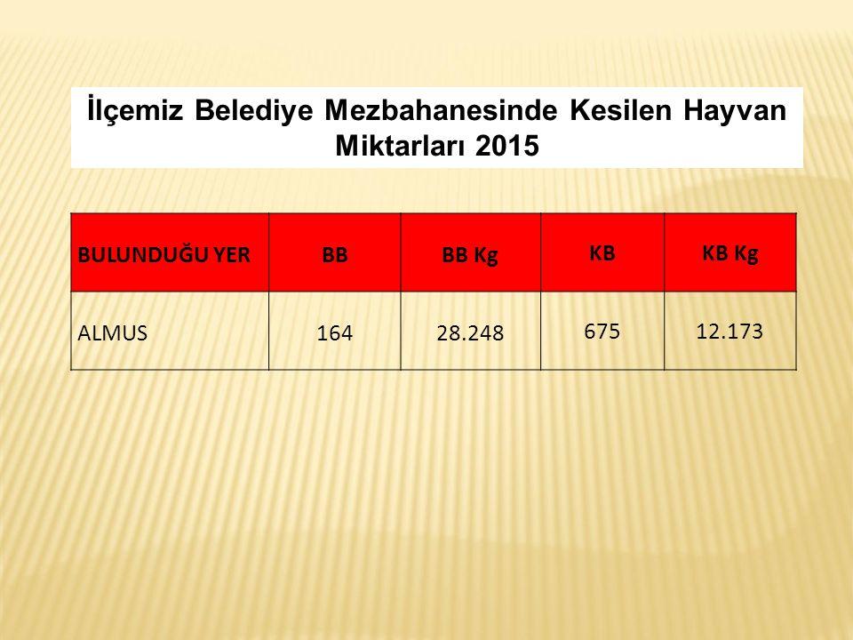 İlçemiz Belediye Mezbahanesinde Kesilen Hayvan Miktarları 2015