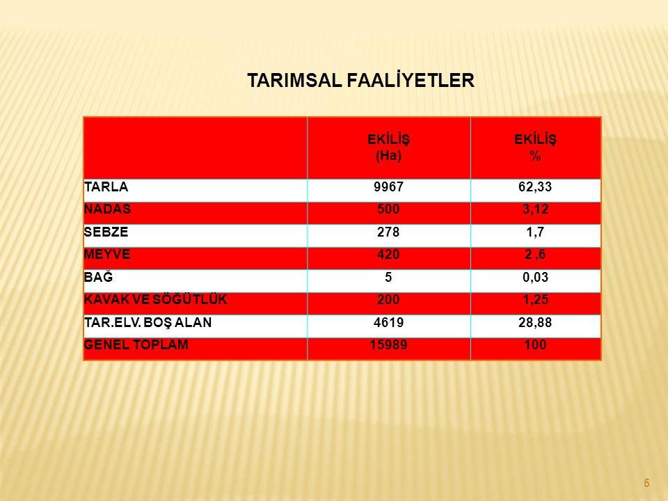 TARIMSAL FAALİYETLER EKİLİŞ (Ha) EKİLİŞ % TARLA 9967 62,33 NADAS 500