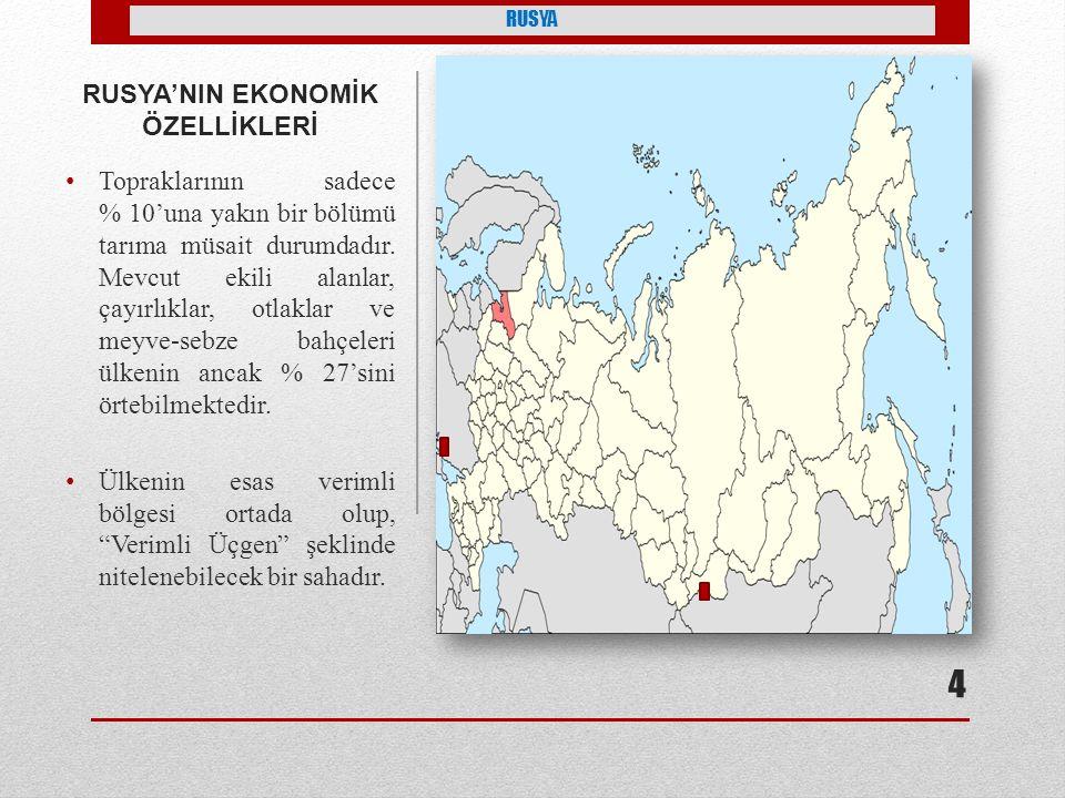 RUSYA'NIN EKONOMİK ÖZELLİKLERİ