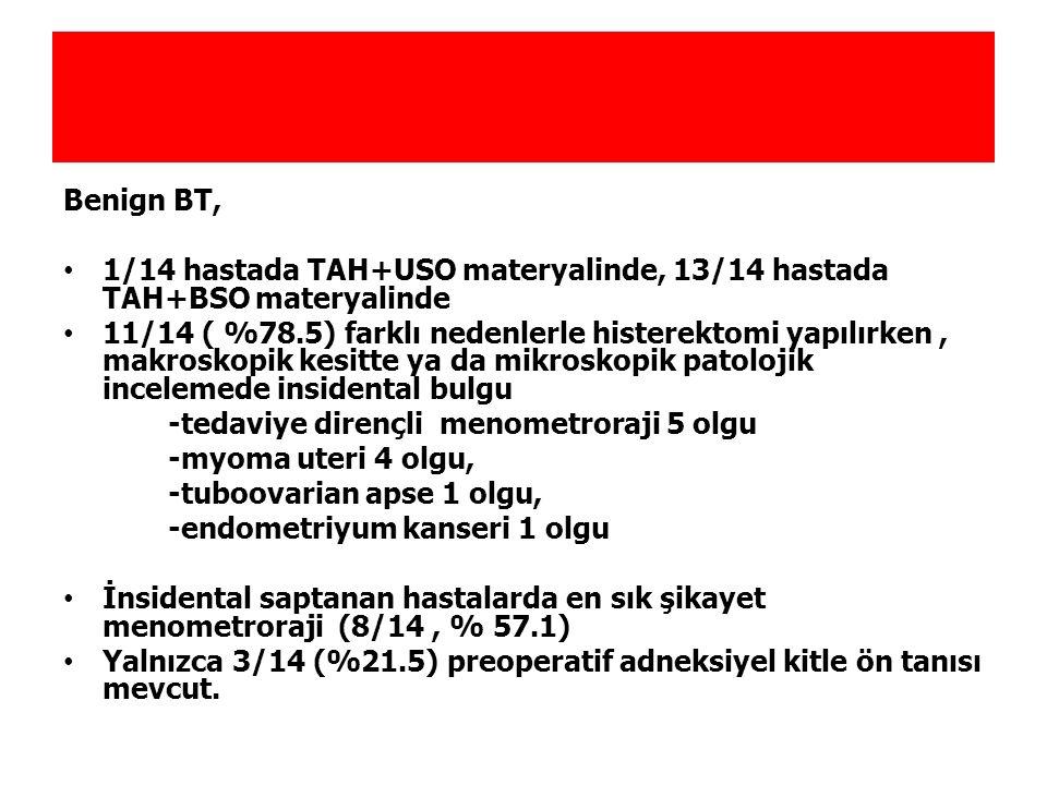 Benign BT, 1/14 hastada TAH+USO materyalinde, 13/14 hastada TAH+BSO materyalinde.