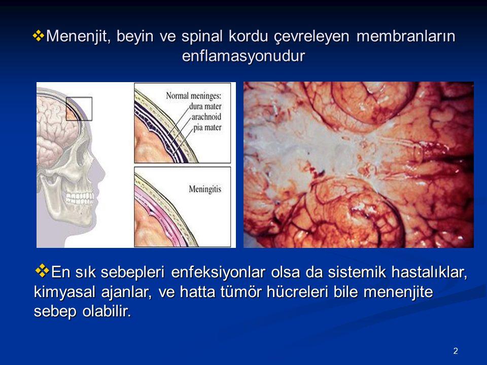 Menenjit, beyin ve spinal kordu çevreleyen membranların enflamasyonudur