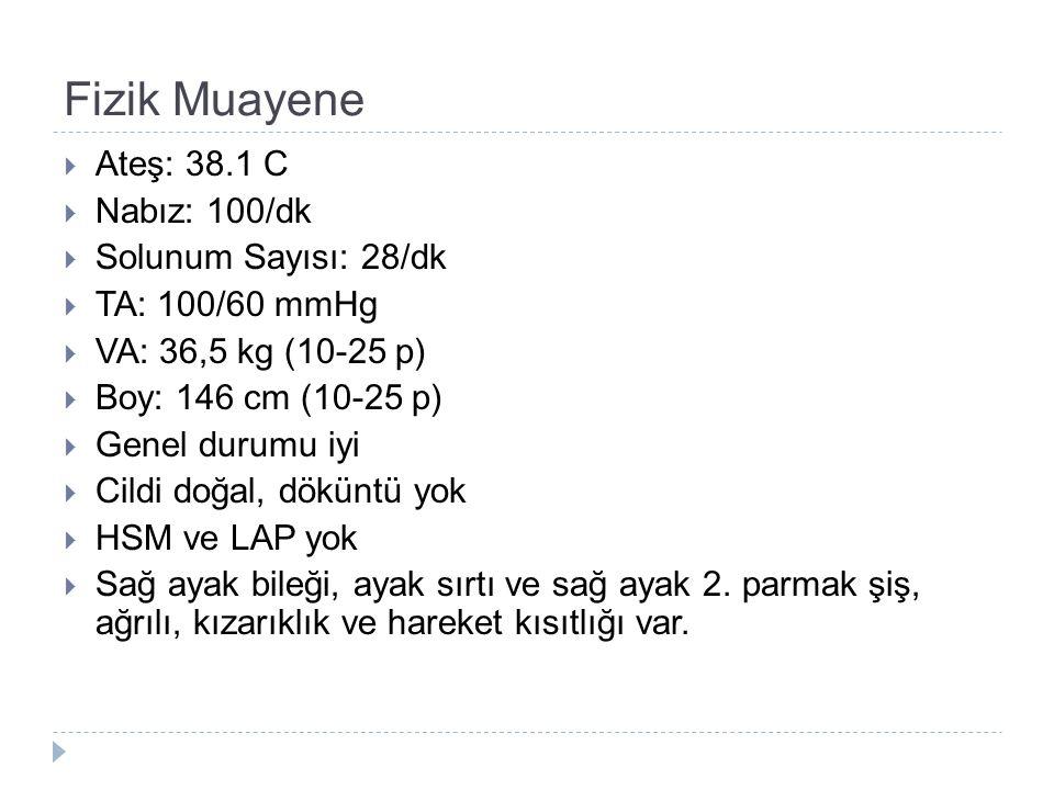 Fizik Muayene Ateş: 38.1 C Nabız: 100/dk Solunum Sayısı: 28/dk