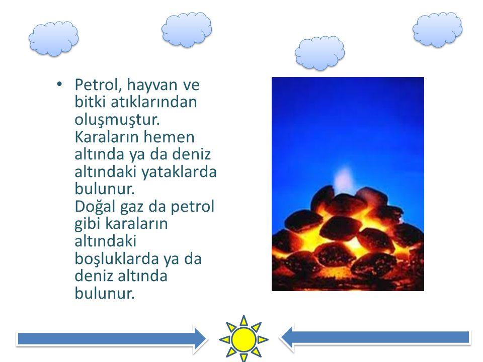 Petrol, hayvan ve bitki atıklarından oluşmuştur