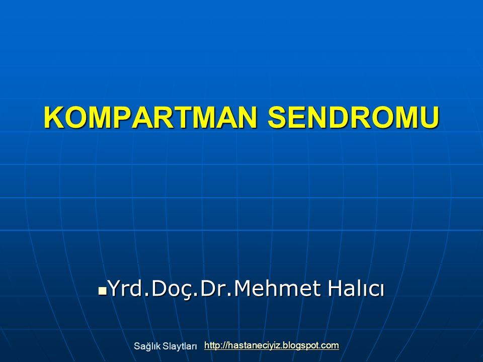 Yrd.Doç.Dr.Mehmet Halıcı