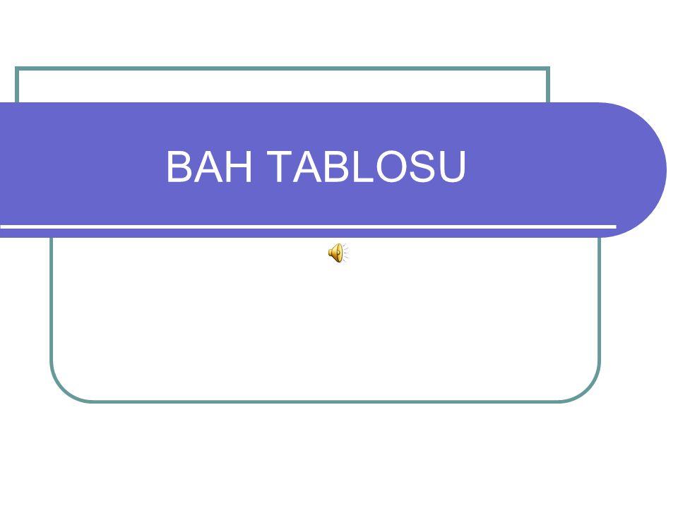 BAH TABLOSU