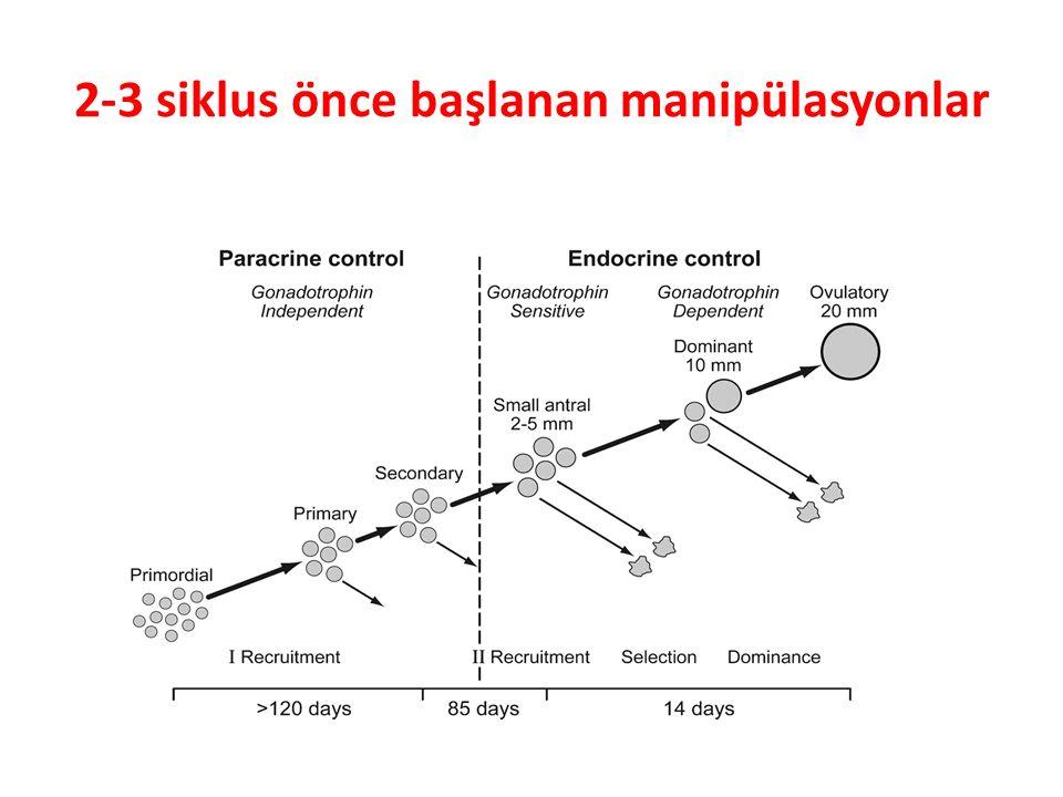 2-3 siklus önce başlanan manipülasyonlar