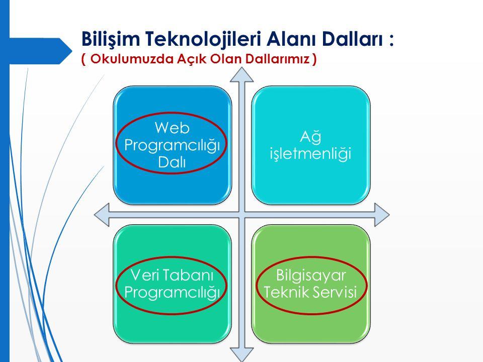 Bilişim Teknolojileri Alanı Dalları :
