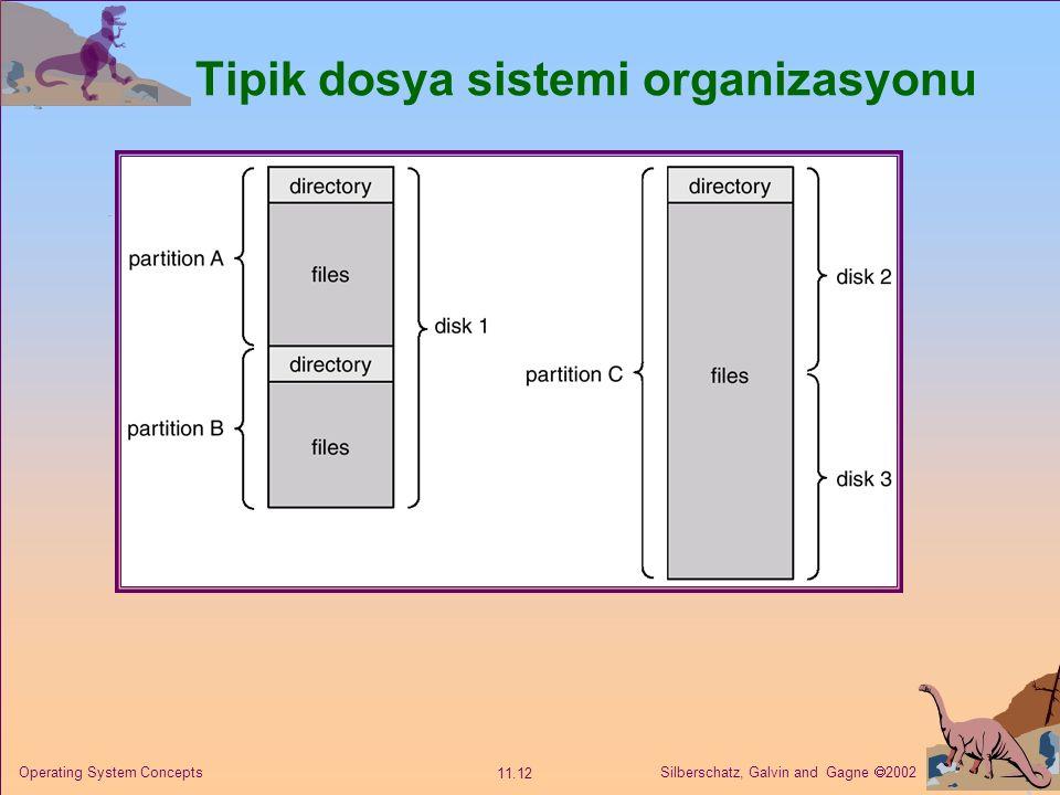 Tipik dosya sistemi organizasyonu