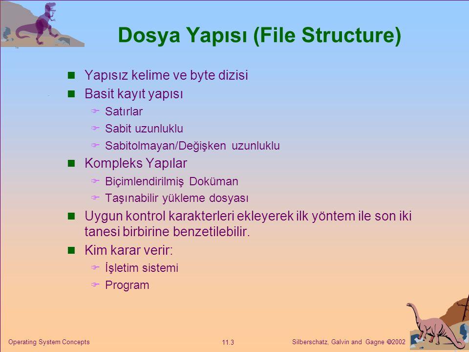 Dosya Yapısı (File Structure)