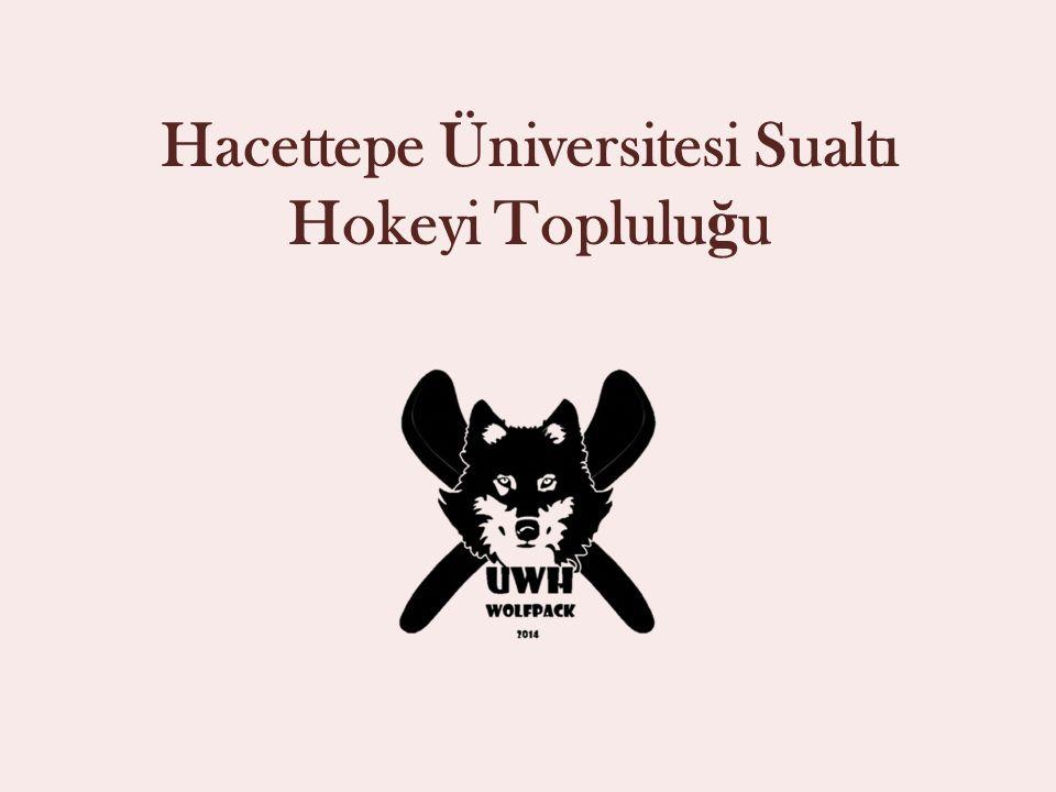 Hacettepe Üniversitesi Sualtı Hokeyi Topluluğu