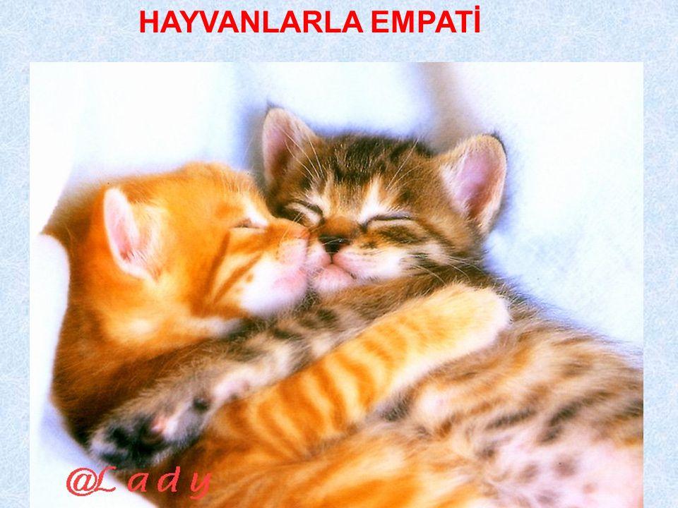 HAYVANLARLA EMPATİ