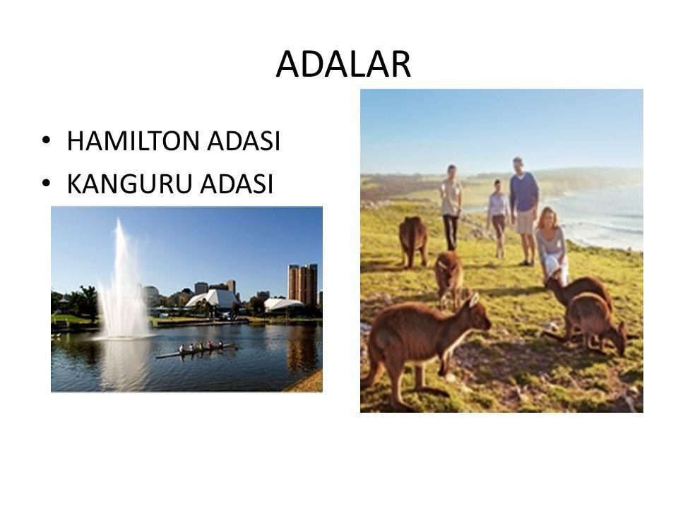 ADALAR HAMILTON ADASI KANGURU ADASI