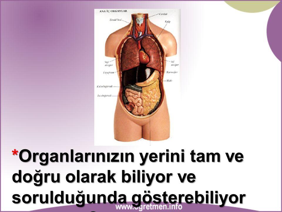 *Organlarınızın yerini tam ve doğru olarak biliyor ve sorulduğunda gösterebiliyor musunuz