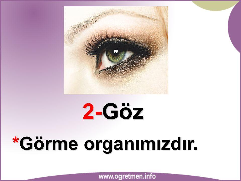 2-Göz *Görme organımızdır.