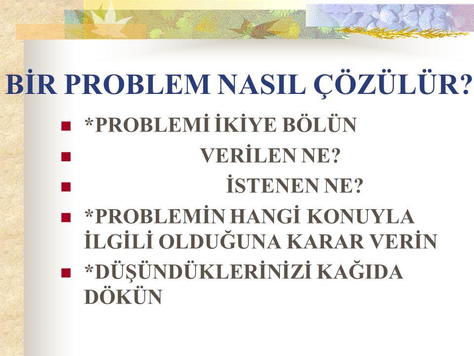 BİR PROBLEM NASIL ÇÖZÜLÜR
