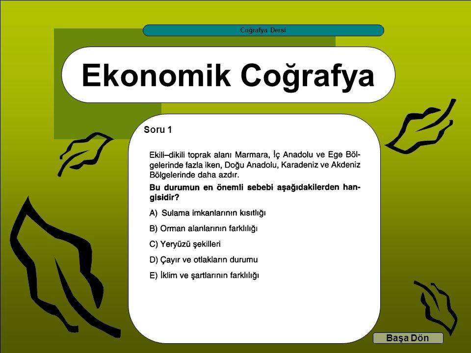 Coğrafya Dersi Ekonomik Coğrafya Soru 1 Başa Dön