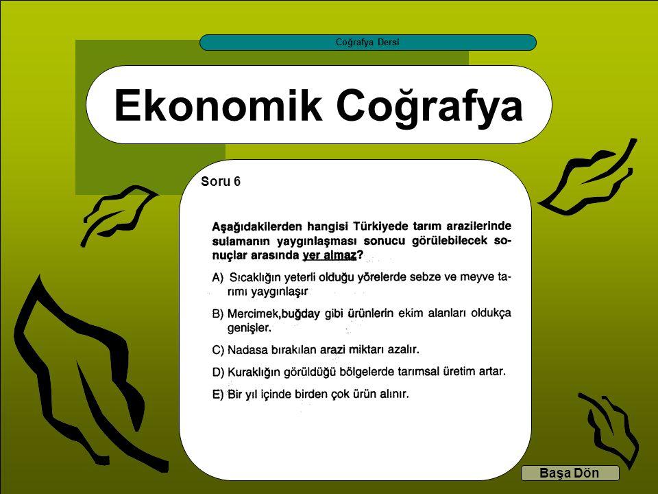 Coğrafya Dersi Ekonomik Coğrafya Soru 6 Başa Dön