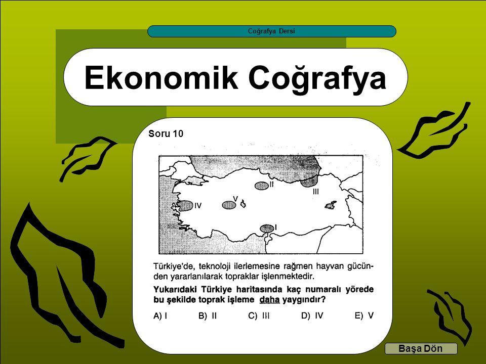 Coğrafya Dersi Ekonomik Coğrafya Soru 10 Başa Dön