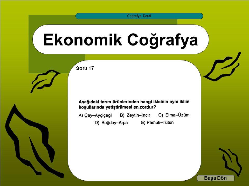 Coğrafya Dersi Ekonomik Coğrafya Soru 17 Başa Dön
