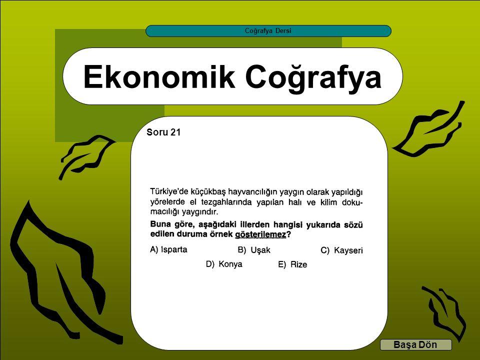 Coğrafya Dersi Ekonomik Coğrafya Soru 21 Başa Dön